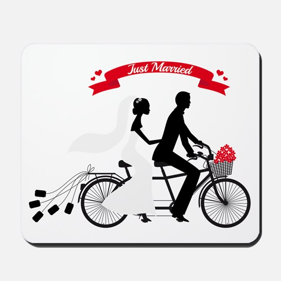 Just married bride and groom on tandem bicycle Mou