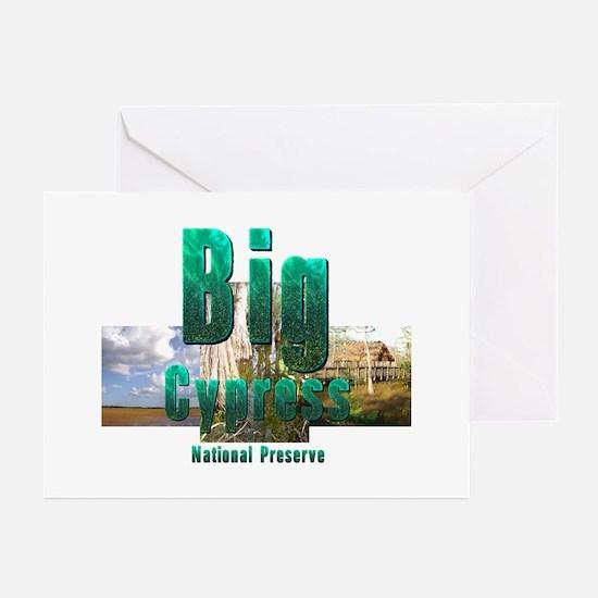 ABH Big Cypress Greeting Cards (Pk of 20)