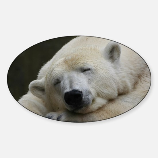 Polar bear 011 Sticker (Oval)
