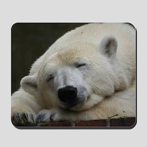 Polar bear 011 Mousepad