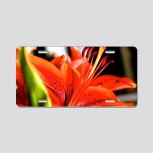 Orange Lilly Blossom  Aluminum License Plate