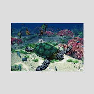Sea Turtle Magnets