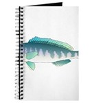 Green Jobfish Grey Snapper Uku Journal
