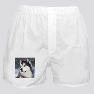 Call of the Wild Boxer Shorts