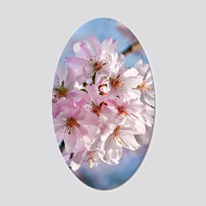Japanese Cherry Blossoms 20x12 Oval Wall Decal