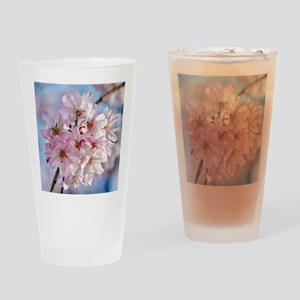 Japanese Cherry Blossoms Drinking Glass
