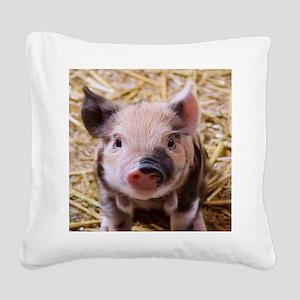 sweet little piglet 2 Square Canvas Pillow