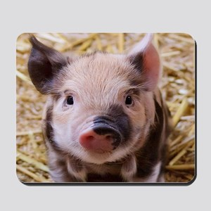 sweet little piglet 2 Mousepad