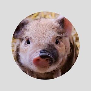 """sweet little piglet 2 3.5"""" Button"""