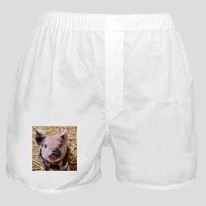 sweet little piglet 2 Boxer Shorts