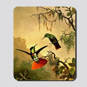 Two Hooded Visorbearer Hummingbirds Mousepad
