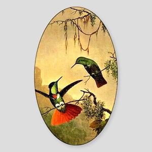 Two Hooded Visorbearer Hummingbirds Sticker (Oval)