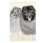 Keeshonds Postcards (Package of 8)