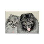 Keeshonds Rectangle Magnet (100 pack)