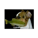 Jack Russell Terrier Fishing Magnets