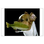 Jack Russell Terrier Fishing Posters