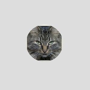 Main Coon Kitty Cat Mini Button