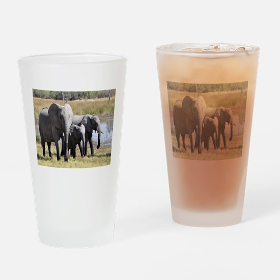 Wild Elephants Drinking Glass