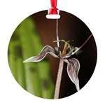 Fetid Adders Tongue Flower Ornament
