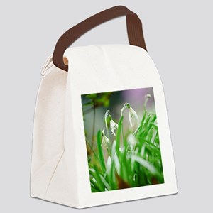 Snowdrops in spring Canvas Lunch Bag