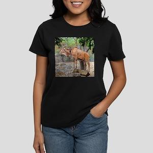 Taking It All In T-Shirt