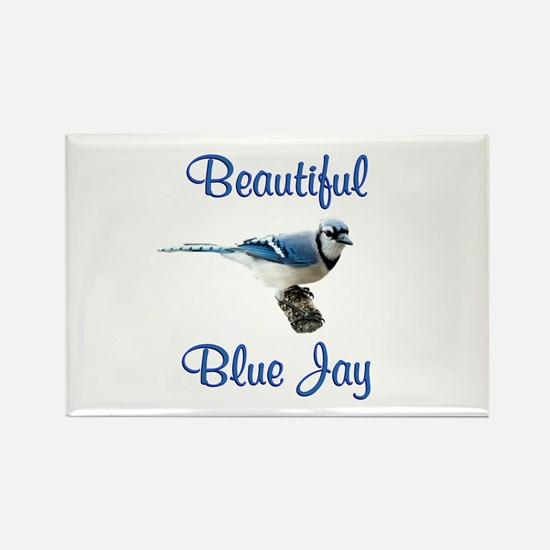 Beautiful Blue Jay Rectangle Magnet (100 pack)