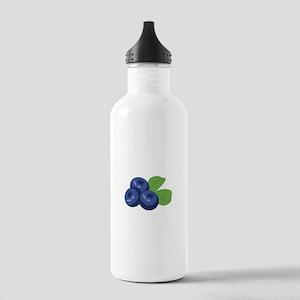 Blueberry Water Bottle