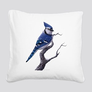 blue jay bird Square Canvas Pillow