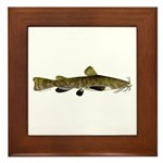 Flathead Catfish Framed Tile