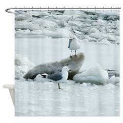 Seagulls On Ice Shower Curtain