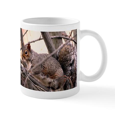 Fluffy Squirrel Mugs