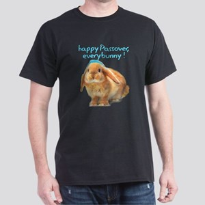 happy-Passover T-Shirt
