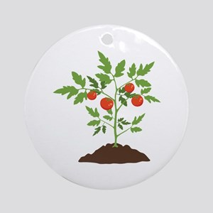 Tomato Plant Ornament (Round)