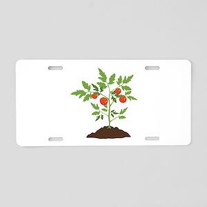 Tomato Plant Aluminum License Plate