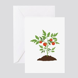 Tomato Plant Greeting Cards
