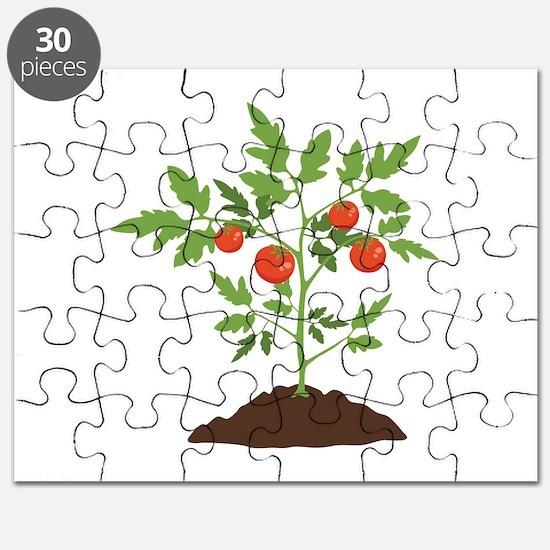 Tomato Plant Puzzle