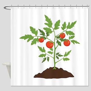 Tomato Plant Shower Curtain