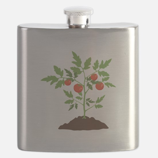 Tomato Plant Flask