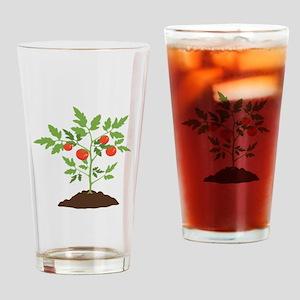 Tomato Plant Drinking Glass