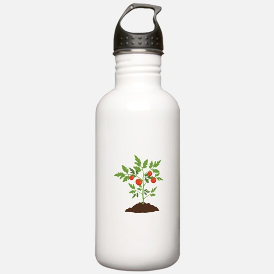 Tomato Plant Water Bottle