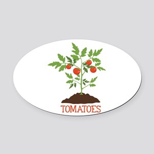 TOMATOES Oval Car Magnet
