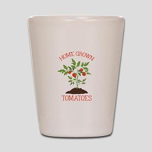 HOME GROWN TOMATOES Shot Glass