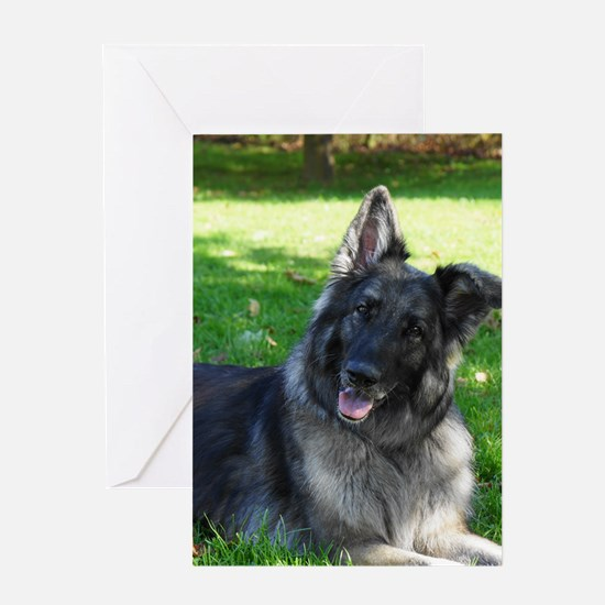 Kimber smiling pretty Greeting Cards