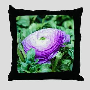 Purple Persian Buttercup Throw Pillow