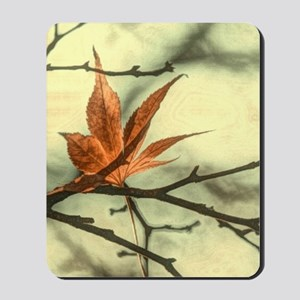 zen autumn maple leaves fall landscape Mousepad