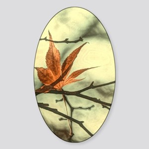 zen autumn maple leaves fall landsc Sticker (Oval)