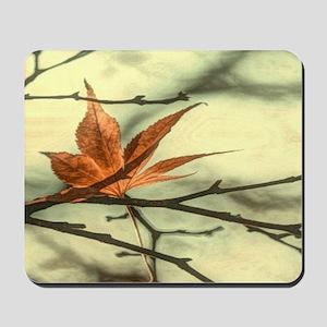 autumn maple leaves fall landscape Mousepad