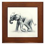 Baby Elephant Framed Tile