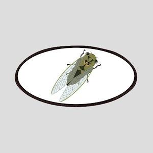 Cicadas Resting Patches