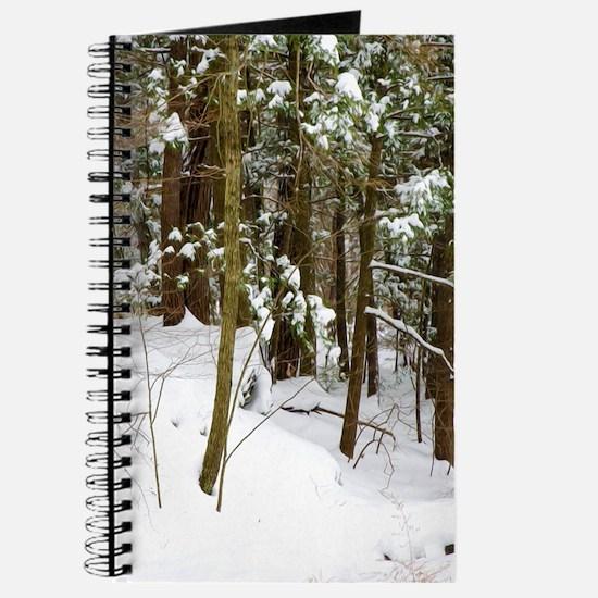 Winter forest Journal